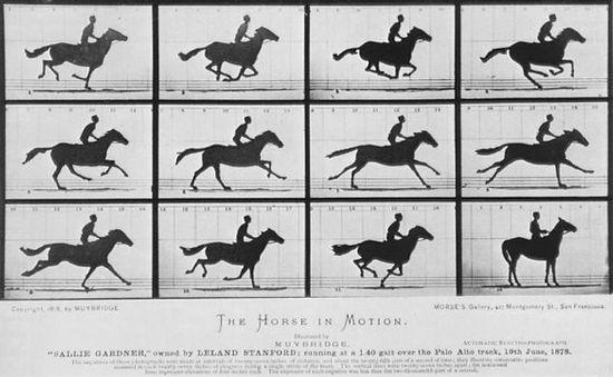 sallie_gardner_at_a_gallop