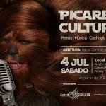 Picareta Cultural OFFFlip 2015