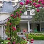 Casa-das-Rosas_ramo de rosa
